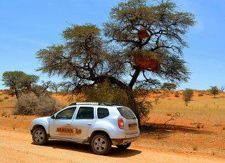 Duster Kalahari