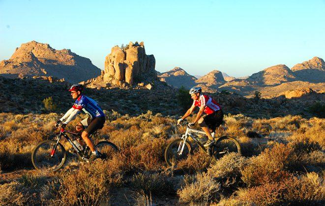 Sukkulenten Karoo Mountainbiken