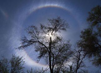 Ein seltenes Schauspiel... Durch feuchte Luft hervorgerufen, bildet sich eine Korona oder auch Areole um die Sonne. Nur mit einem Weitwinkel von 16mm (Vollformat) oder 28 bei meiner Mittelformatkamera war es möglich, den gesamten Kreis auf einem Bild einzufangen.