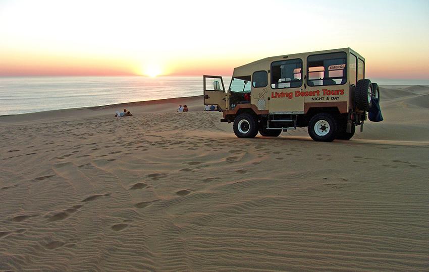 Living Desert Tours