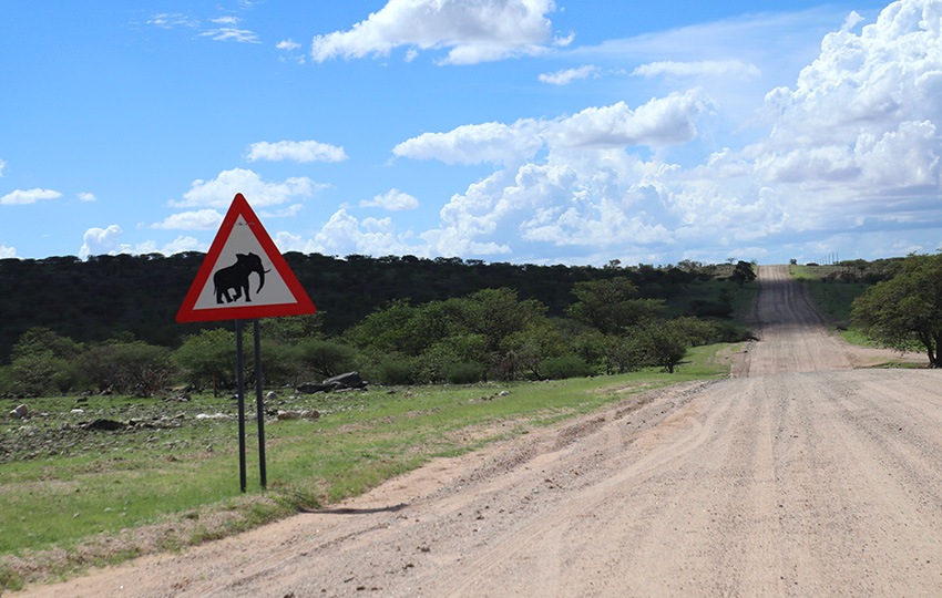 Namibia Elefantenverkehrsschild