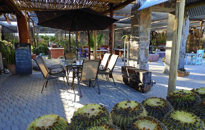 Cactus & Coffee Veranda