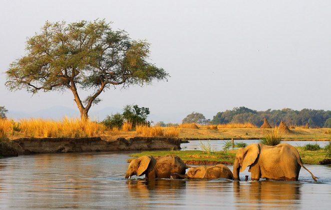 Sambesi Namibia