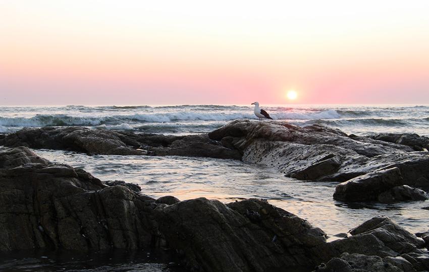 Sonnenuntergang Atlantik Namibia
