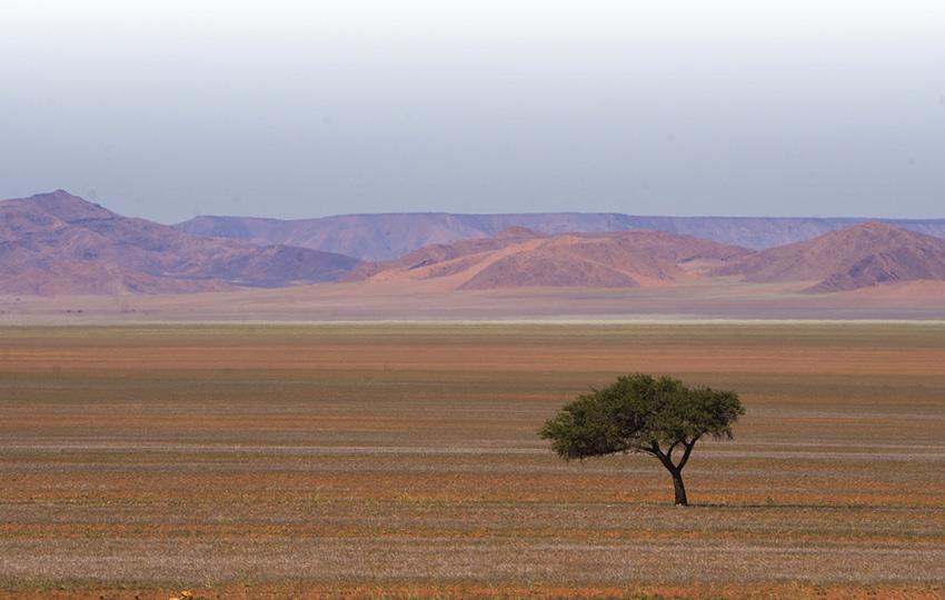 Naukluft Berge Namibia