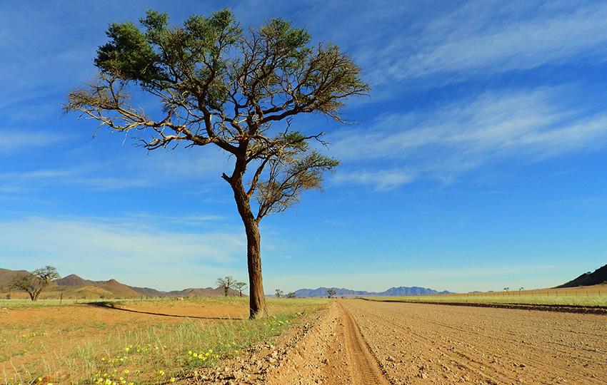 Namibias Weite