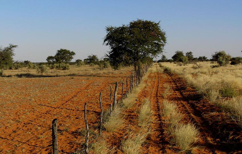 Farmlandschaft, Namibia