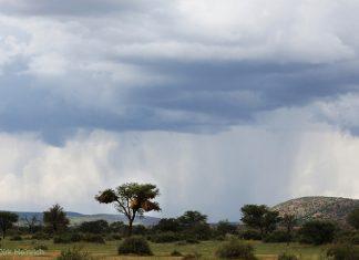 Namibia Regenschauer