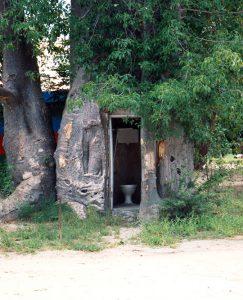 Baobab Katima Mulilo