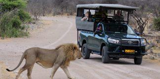Touristenverhalten Namibia