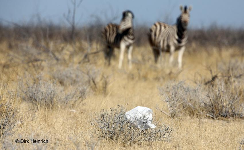 Umweltschutz Namibia