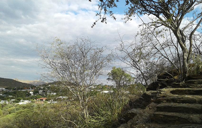 Botanischer Garten, Aussicht