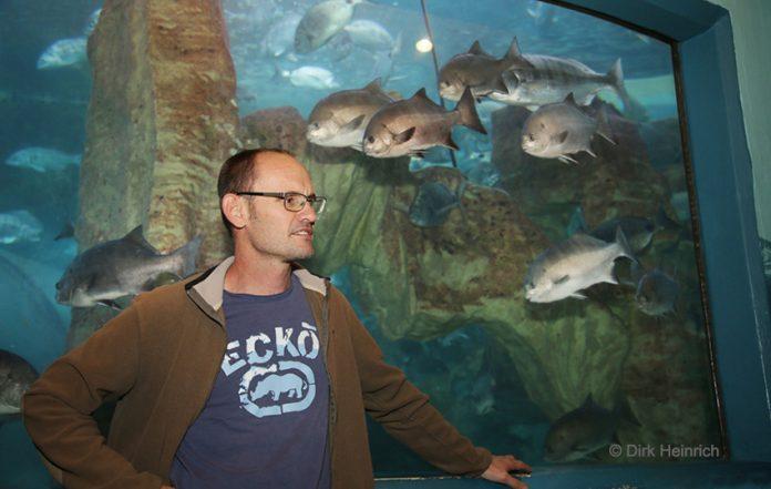 Aquariumleiter Swakopmund