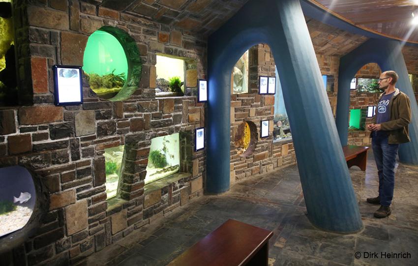 Aquarium Swakopmund