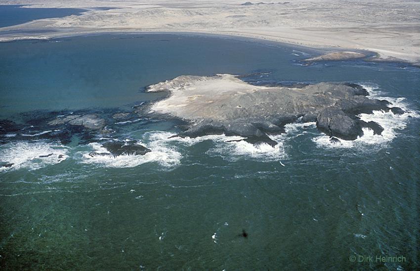 Halifax-Insel, Namibia