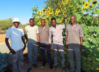 Damara Mopane Lodge, Namibia