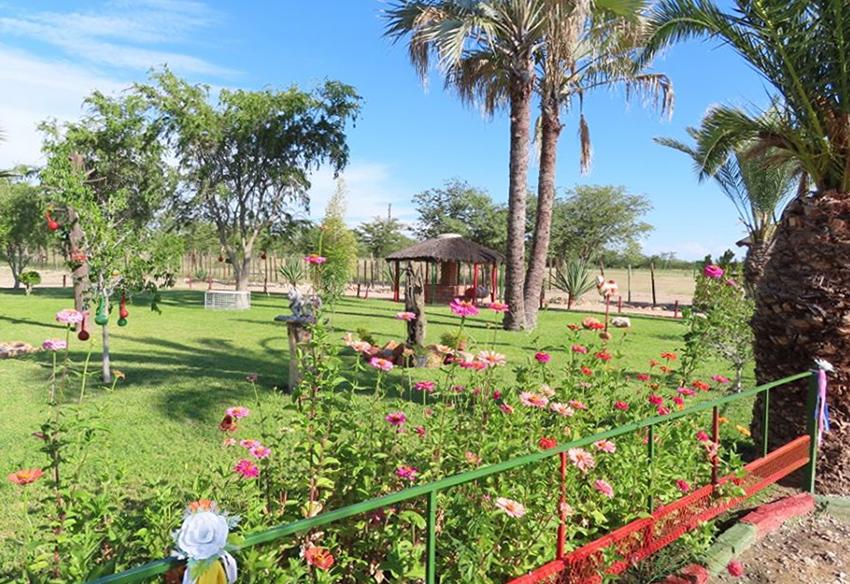 Garten des Kasikili Restcamps