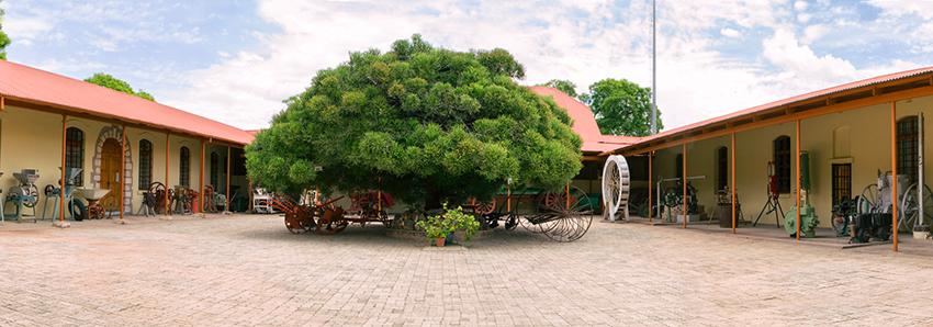 Grootfontein Museum