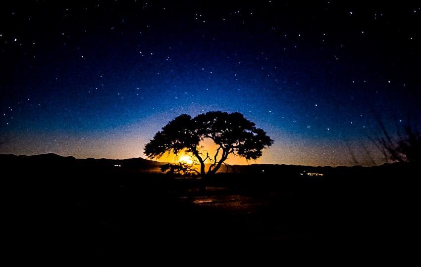 Gondwana Namib Park Sterne