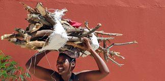 Kavango Feuerholz