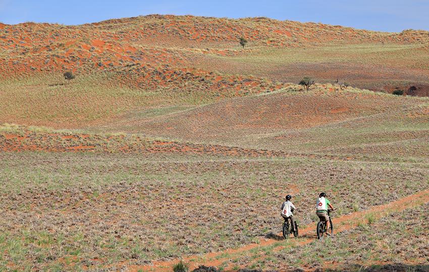 Namib-Wüste, Namibia