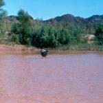 Fischfluss, Südnamibia