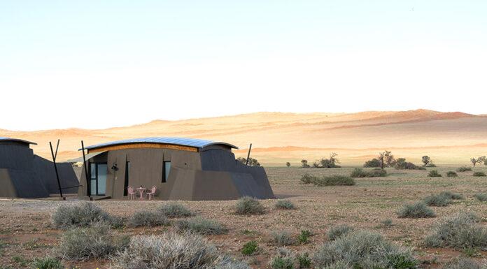 Gondwana The Desert Grace